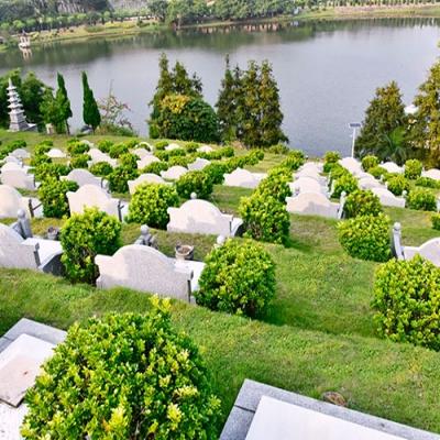 半山公墓草坪葬