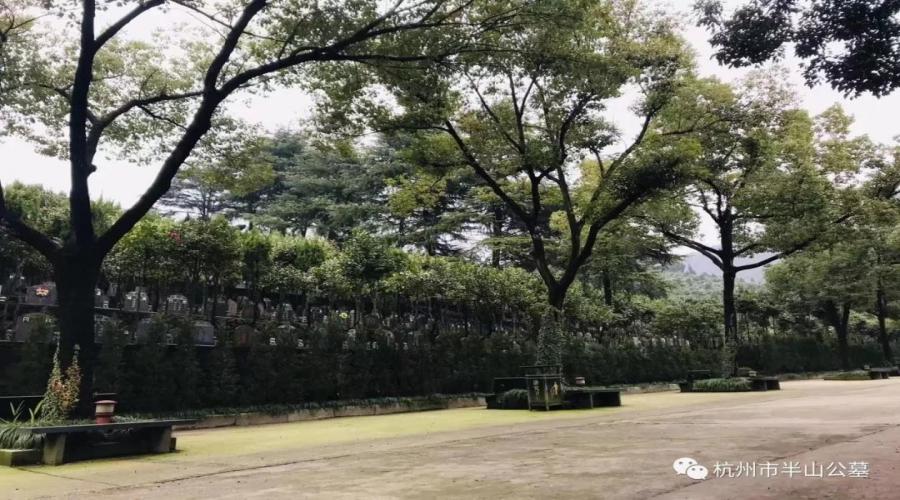 半山公墓景色